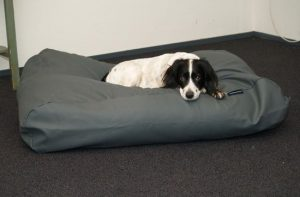 dogs-companion-hondenbed-xl-140-x-95-cm-muisgrijs-leather-look