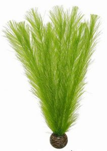 superfish-easy-plants-middel-20-cm