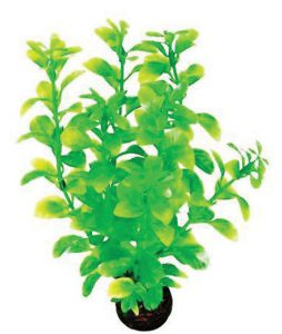 superfish-easy-plants-middel-nr-2-van-plastic-20-cm-1-st